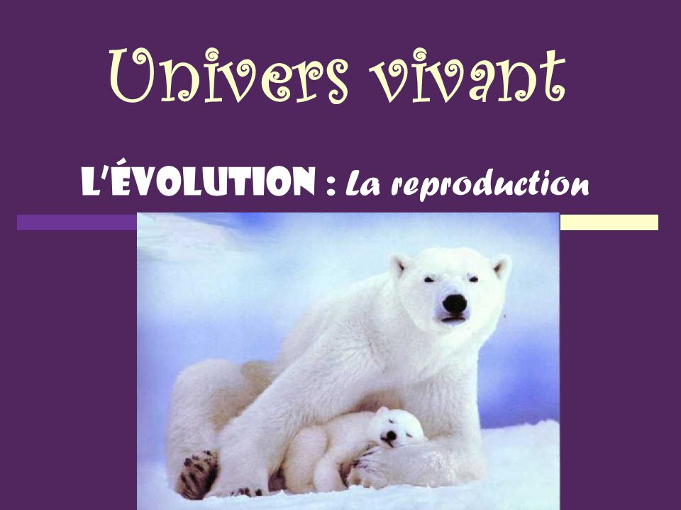 L'évolution : La reproduction