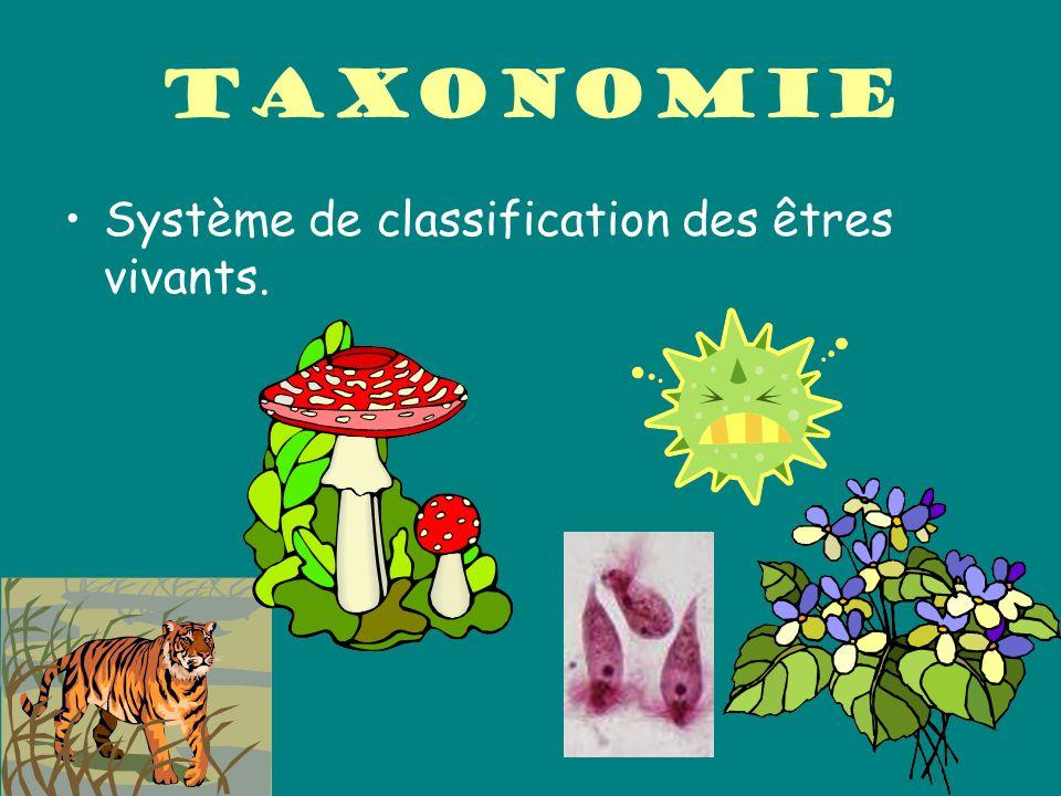Taxonomie Système de classification des êtres vivants.