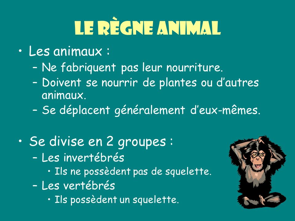 Le règne animal Les animaux : Se divise en 2 groupes :