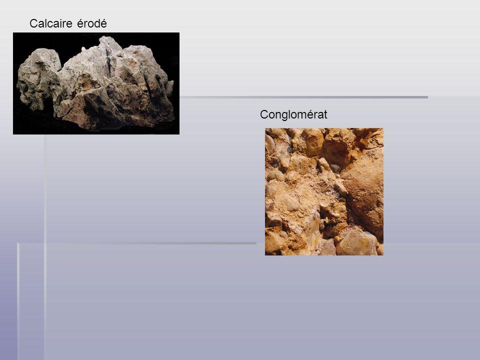 Calcaire érodé Conglomérat