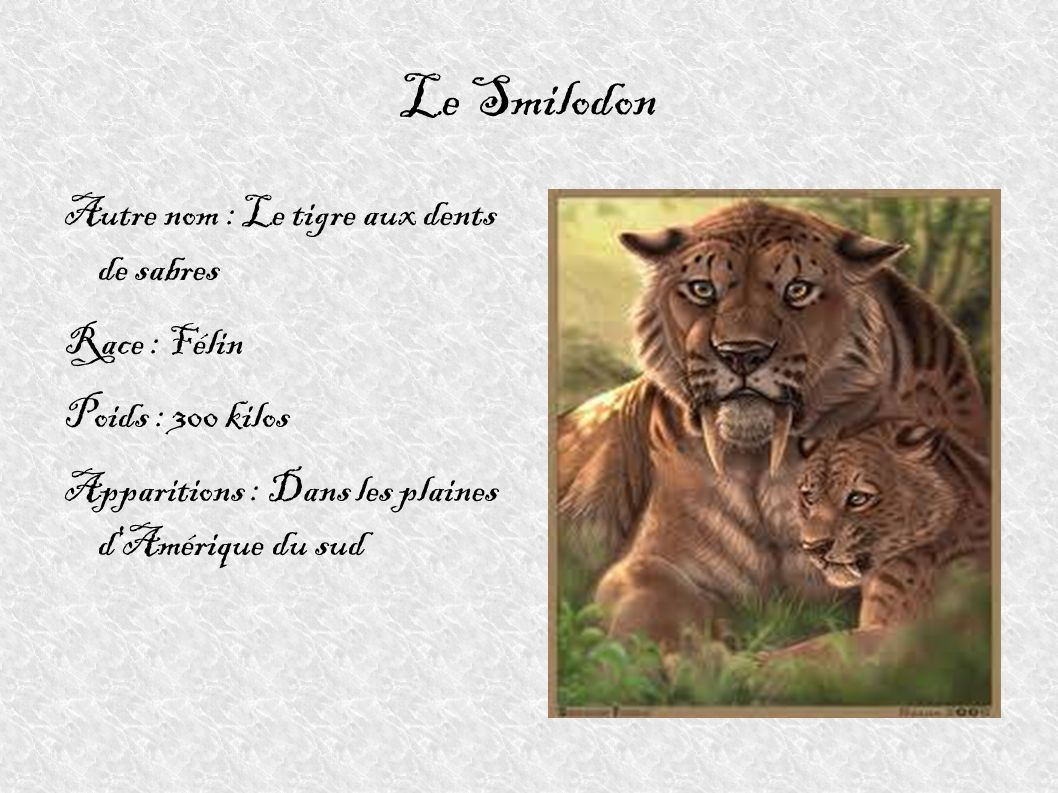 Le Smilodon Autre nom : Le tigre aux dents de sabres Race : Félin