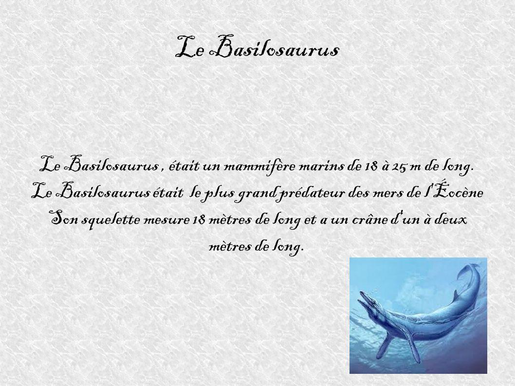 Le BasilosaurusLe Basilosaurus , était un mammifère marins de 18 à 25 m de long. Le Basilosaurus était le plus grand prédateur des mers de l Éocène.