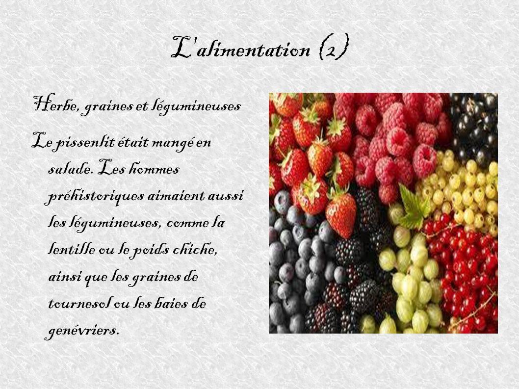 L alimentation (2) Herbe, graines et légumineuses