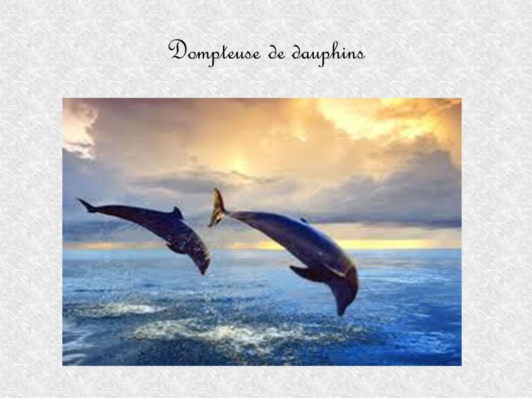 Dompteuse de dauphins