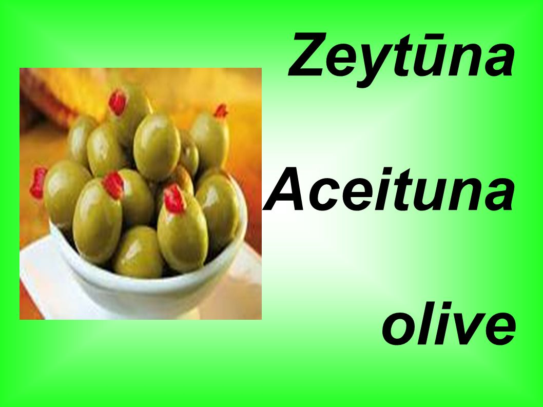 Zeytūna Aceituna olive