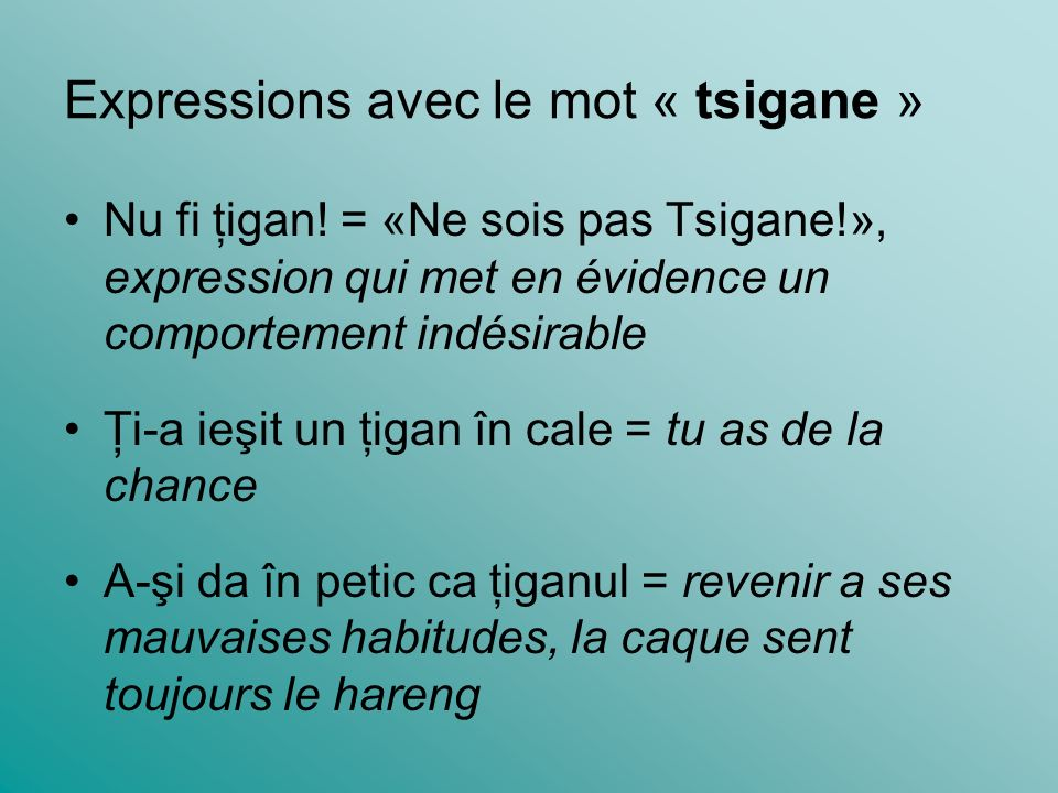 Expressions avec le mot « tsigane »