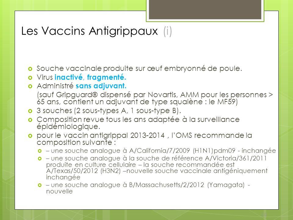 Les Vaccins Antigrippaux (i)