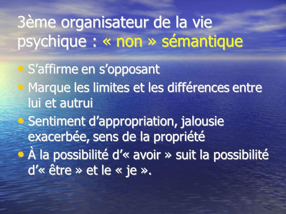3ème organisateur de la vie psychique : « non » sémantique