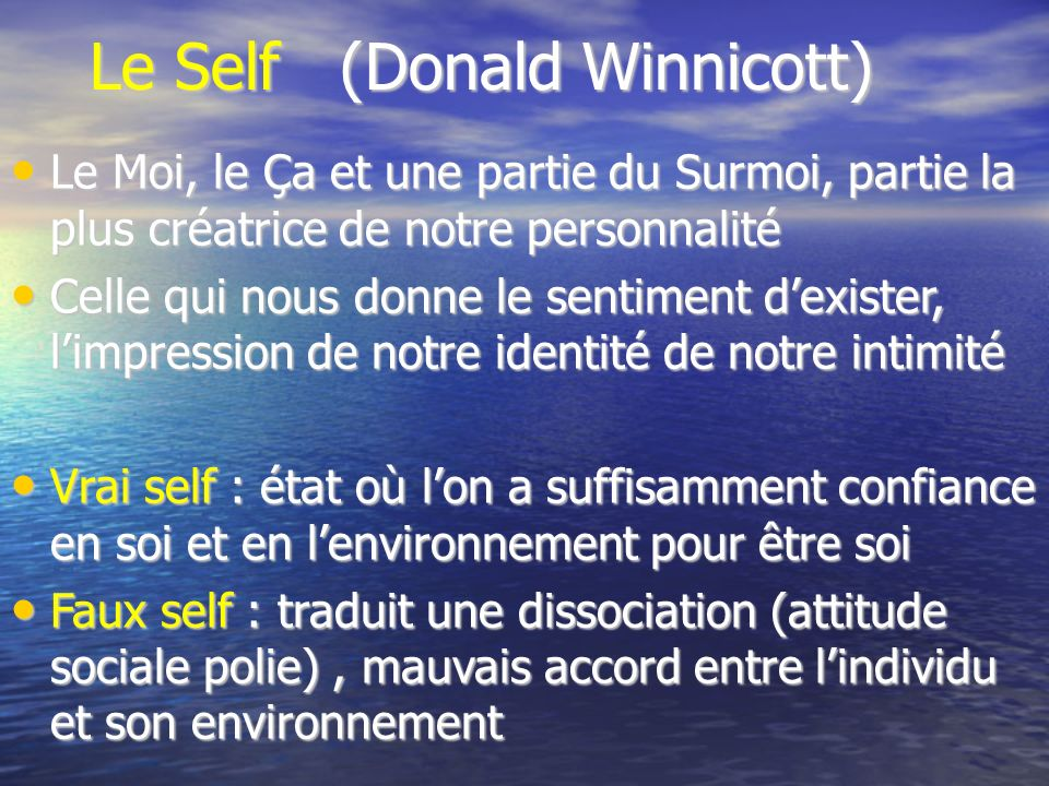 Le Self (Donald Winnicott)