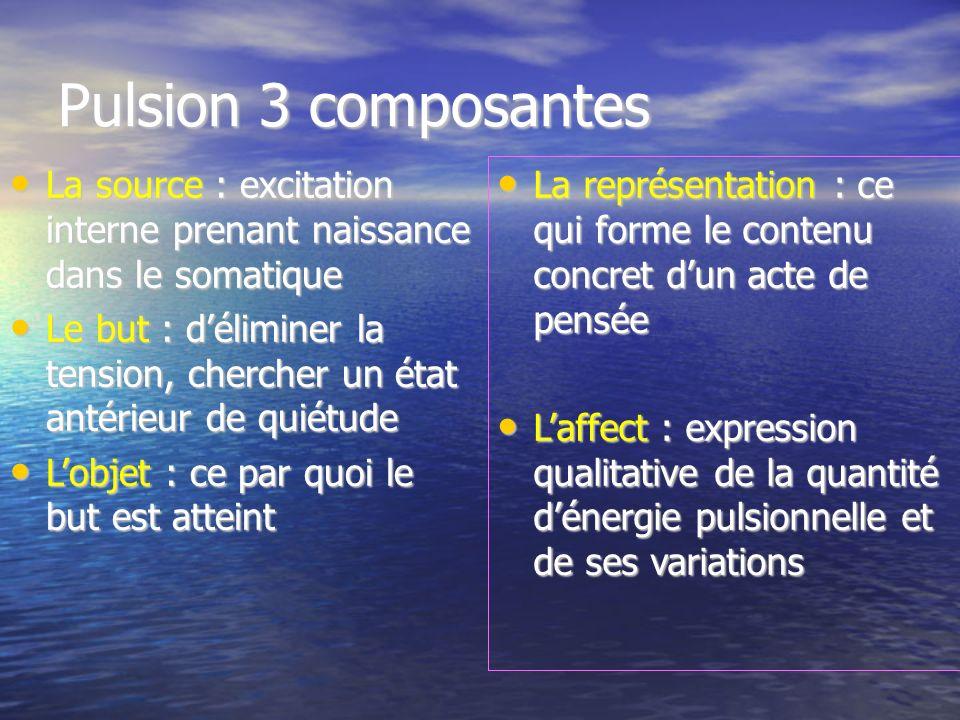 Pulsion 3 composantes La source : excitation interne prenant naissance dans le somatique.