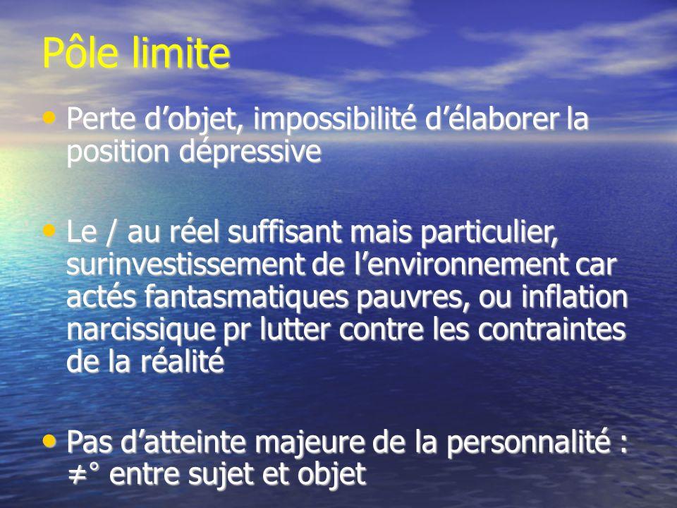 Pôle limite Perte d'objet, impossibilité d'élaborer la position dépressive.