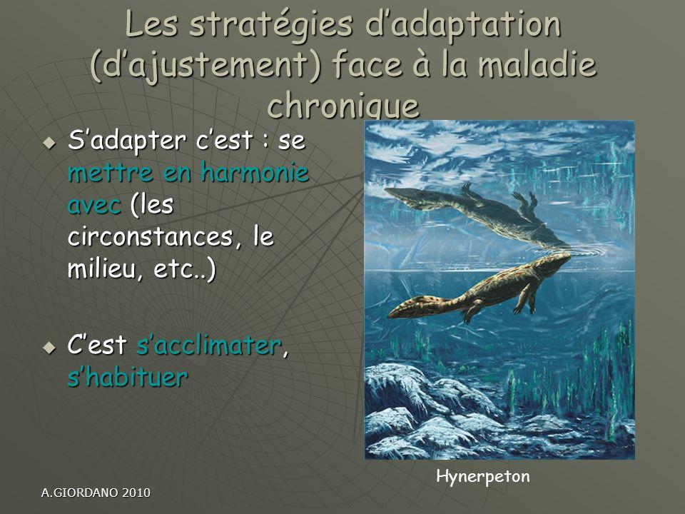 Les stratégies d'adaptation (d'ajustement) face à la maladie chronique