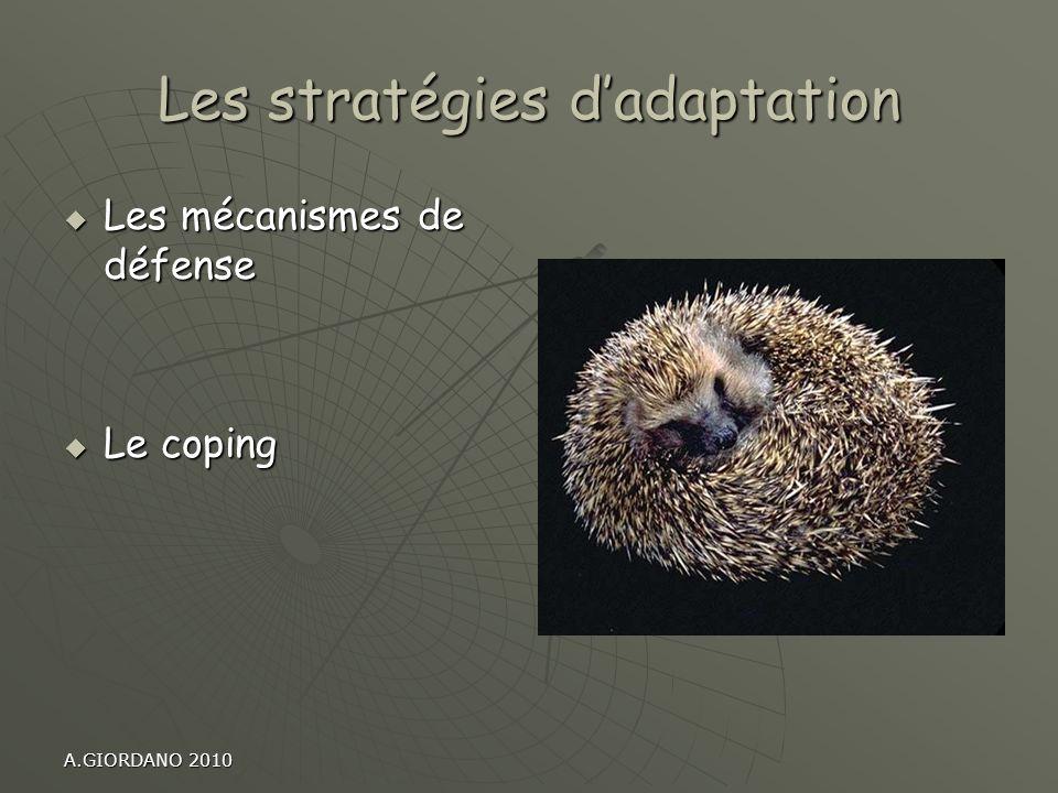 Les stratégies d'adaptation