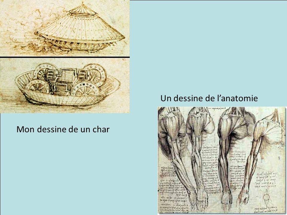 Un dessine de l'anatomie