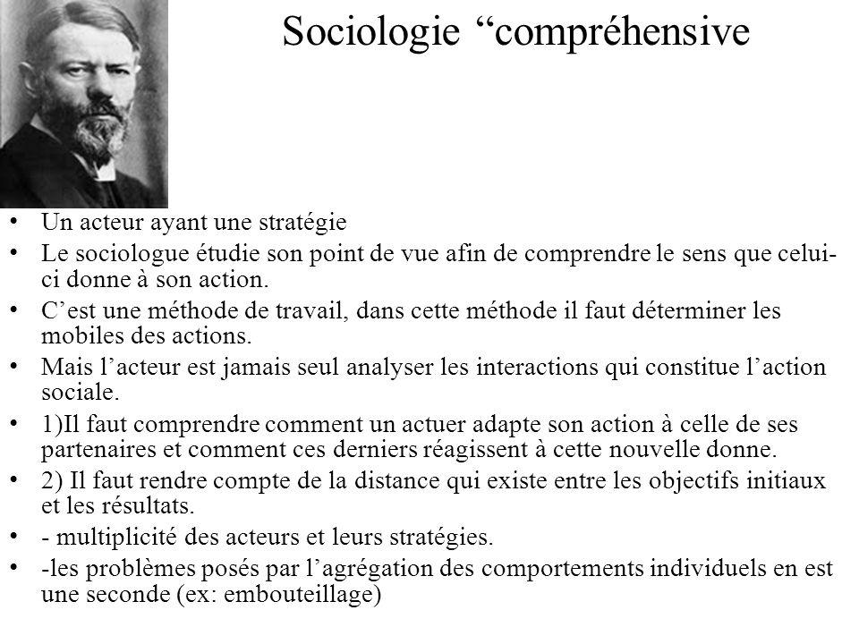Sociologie compréhensive