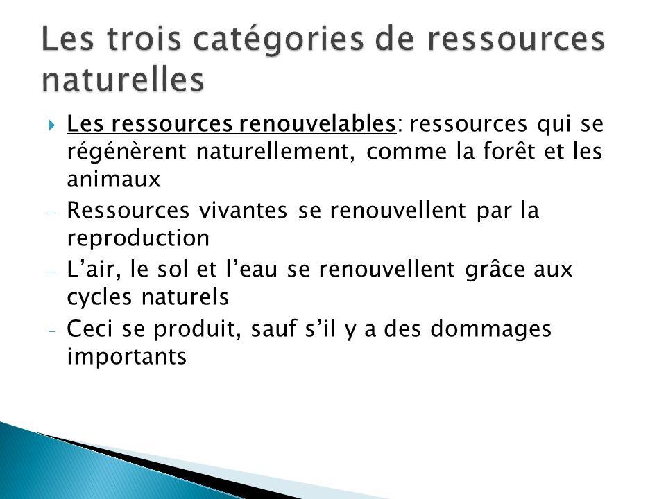 Les trois catégories de ressources naturelles
