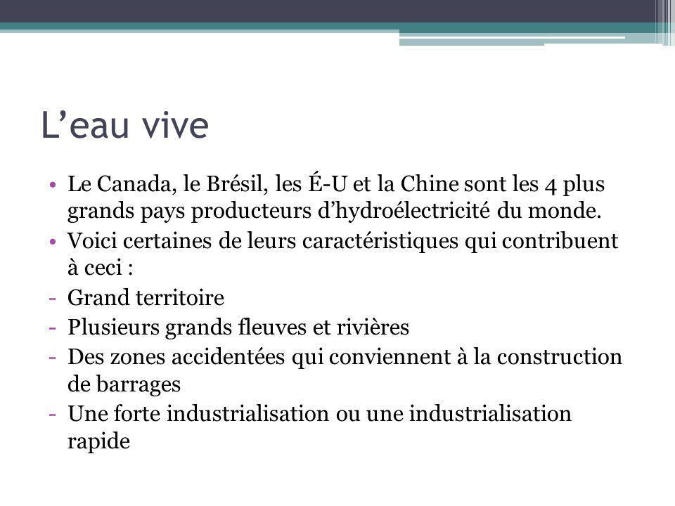 L'eau vive Le Canada, le Brésil, les É-U et la Chine sont les 4 plus grands pays producteurs d'hydroélectricité du monde.