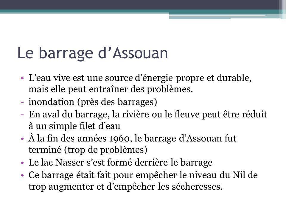 Le barrage d'Assouan L'eau vive est une source d'énergie propre et durable, mais elle peut entraîner des problèmes.
