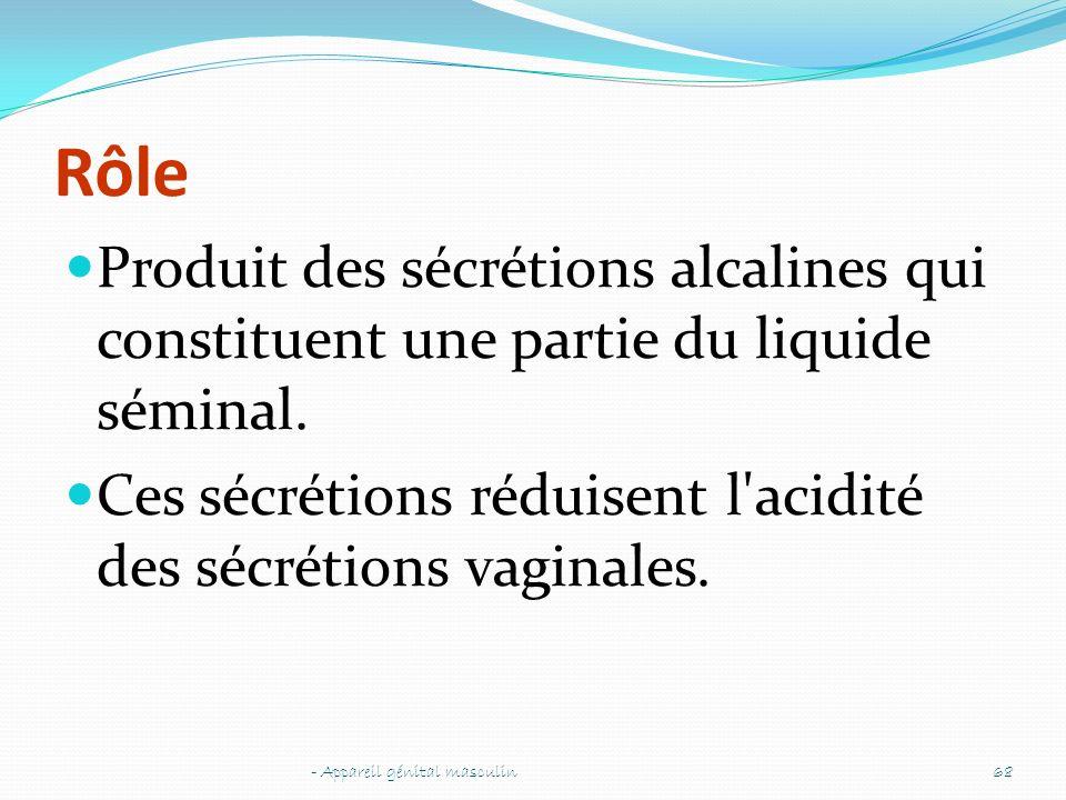 Rôle Produit des sécrétions alcalines qui constituent une partie du liquide séminal. Ces sécrétions réduisent l acidité des sécrétions vaginales.