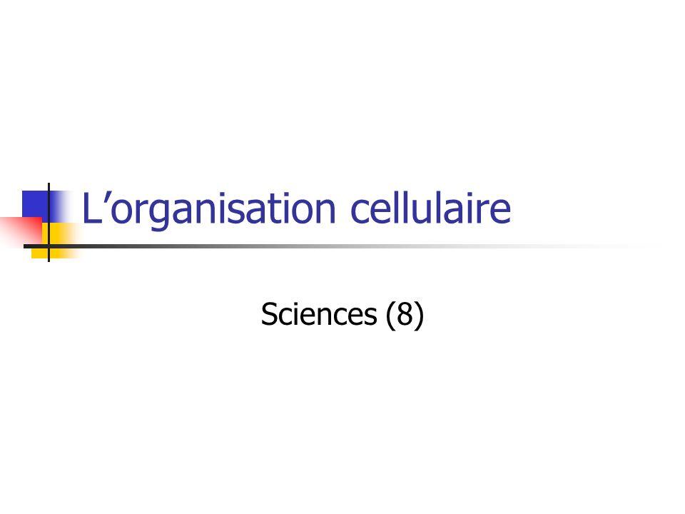 L'organisation cellulaire