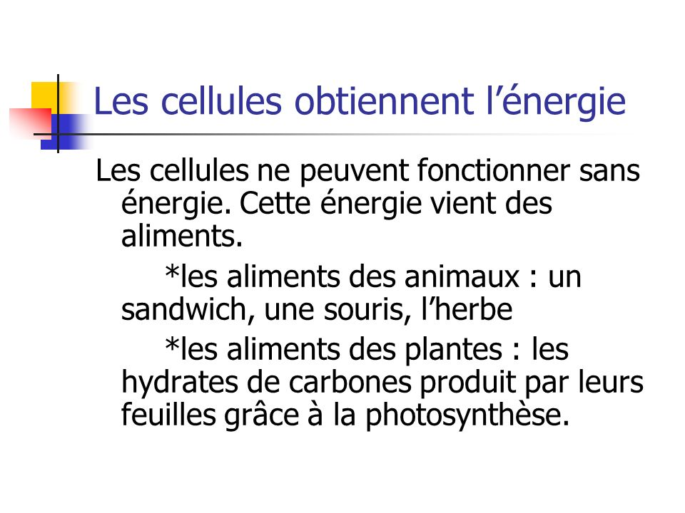 Les cellules obtiennent l'énergie