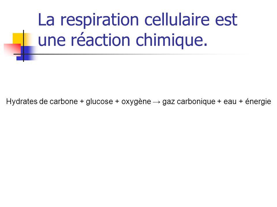 La respiration cellulaire est une réaction chimique.