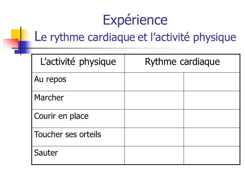 Expérience Le rythme cardiaque et l'activité physique