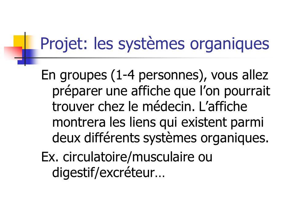 Projet: les systèmes organiques
