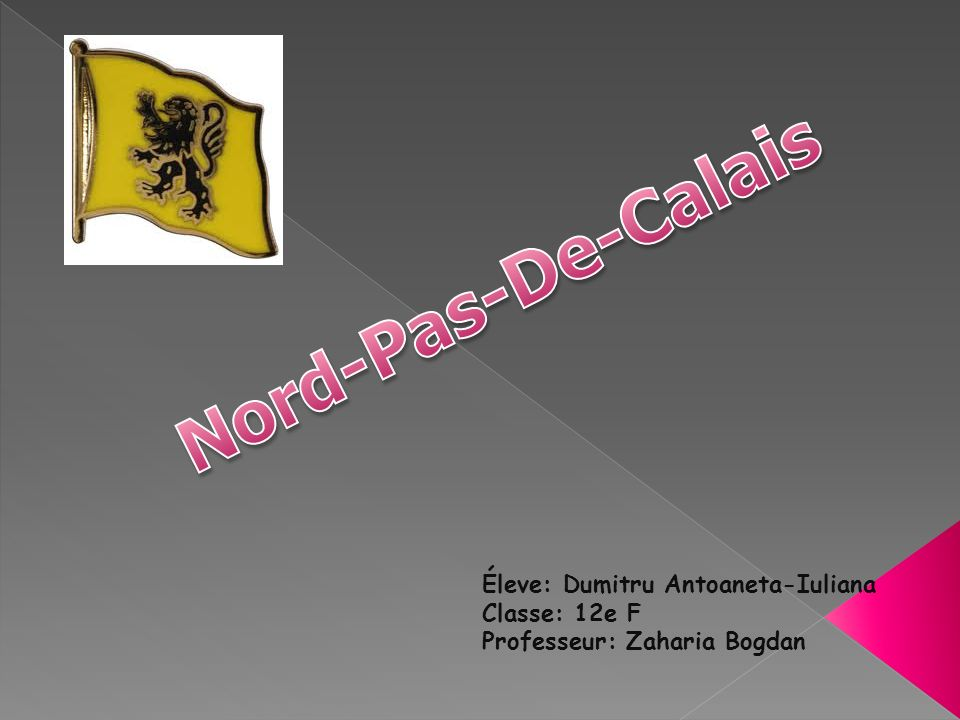Nord-Pas-De-Calais Éleve: Dumitru Antoaneta-Iuliana Classe: 12e F