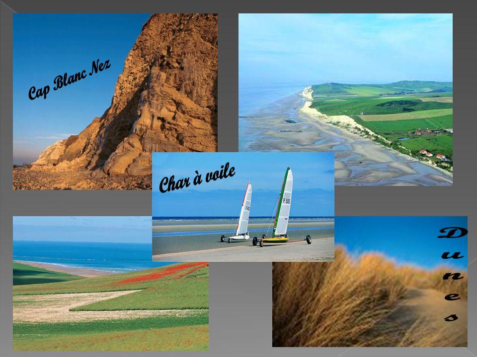 Cap Blanc Nez Char à voile Dunes