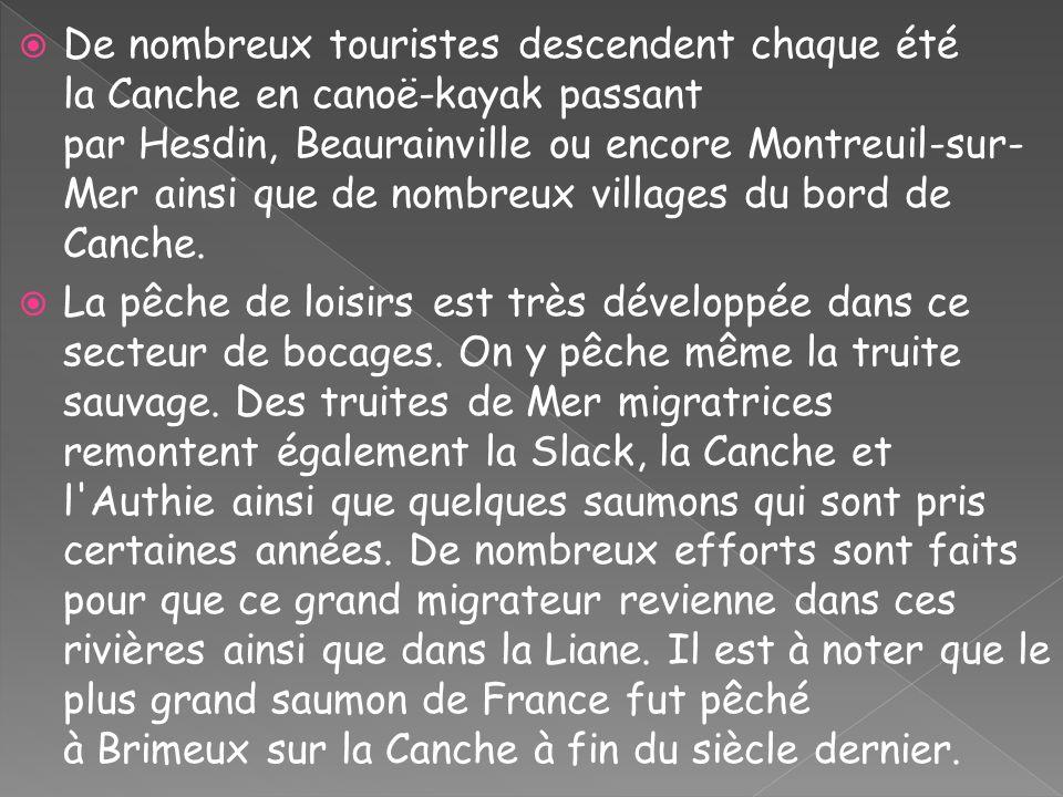 De nombreux touristes descendent chaque été la Canche en canoë-kayak passant par Hesdin, Beaurainville ou encore Montreuil-sur-Mer ainsi que de nombreux villages du bord de Canche.