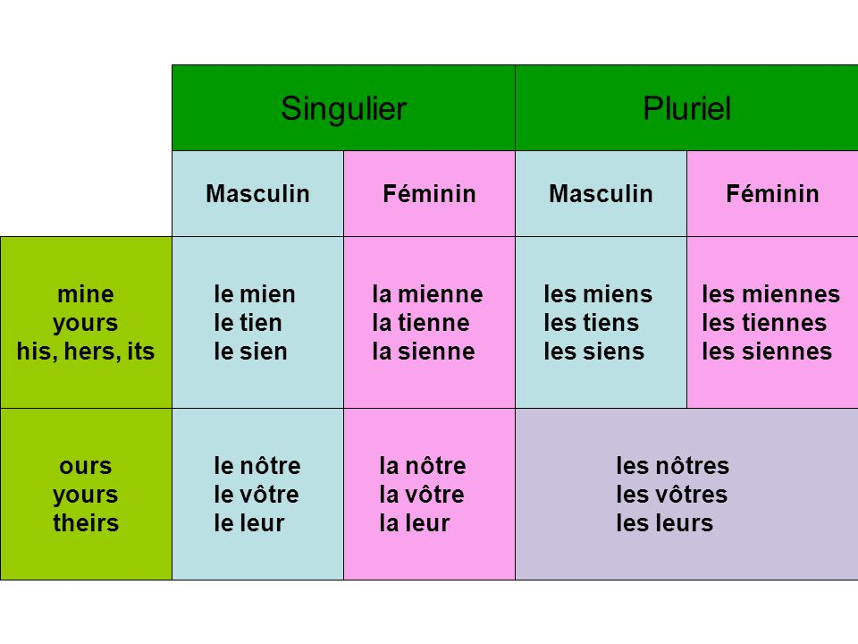Singulier Pluriel Masculin Féminin Masculin Féminin mine yours