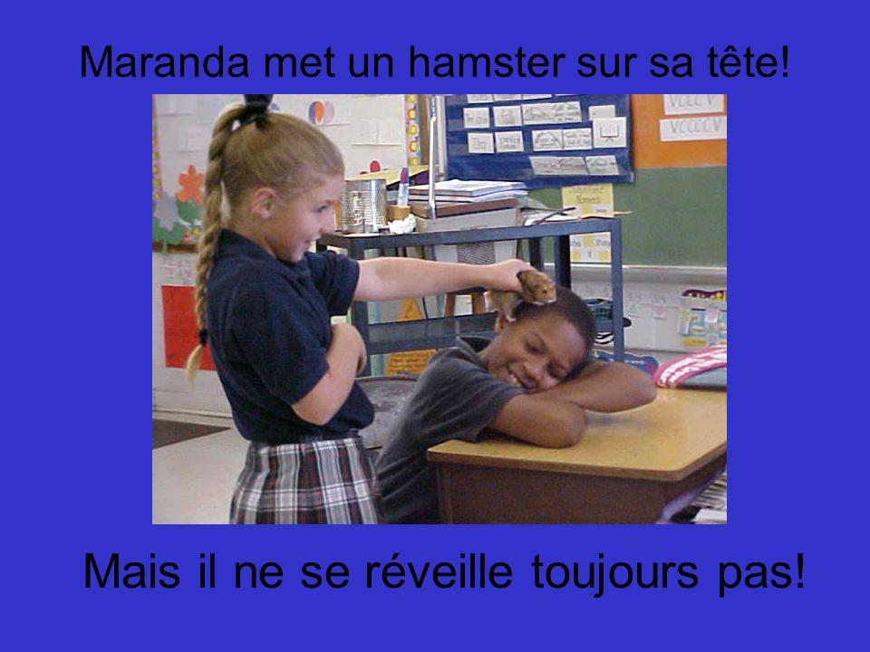 Maranda met un hamster sur sa tête!