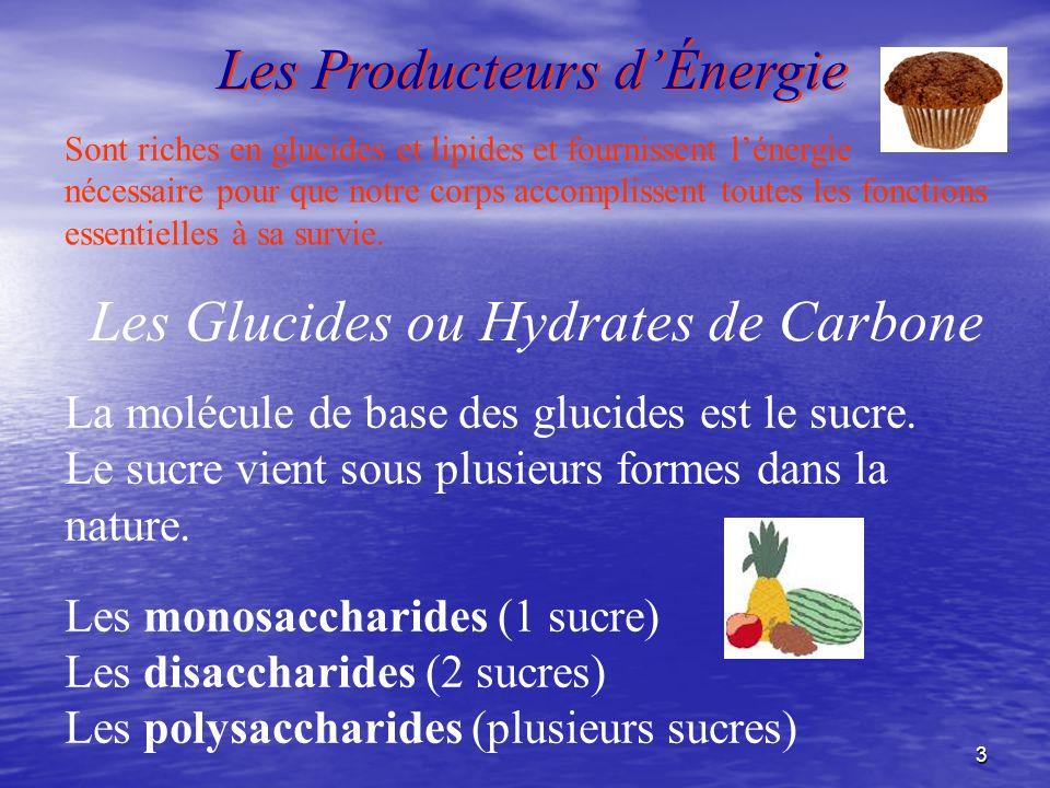 Les Producteurs d'Énergie
