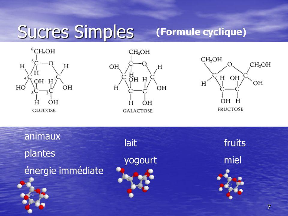 Sucres Simples (Formule cyclique) animaux plantes énergie immédiate