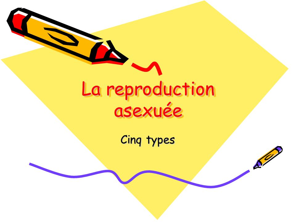 La reproduction asexuée