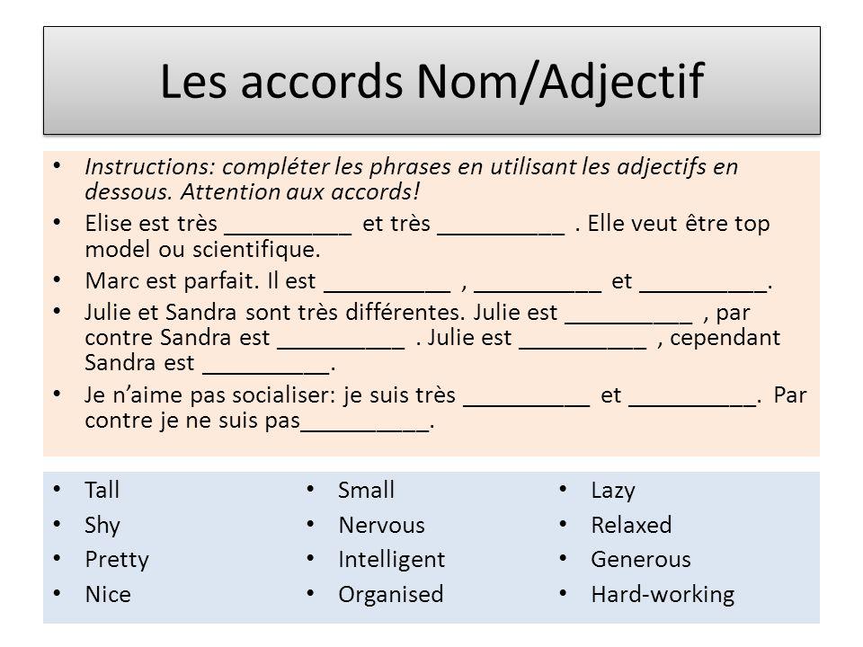 Les accords Nom/Adjectif