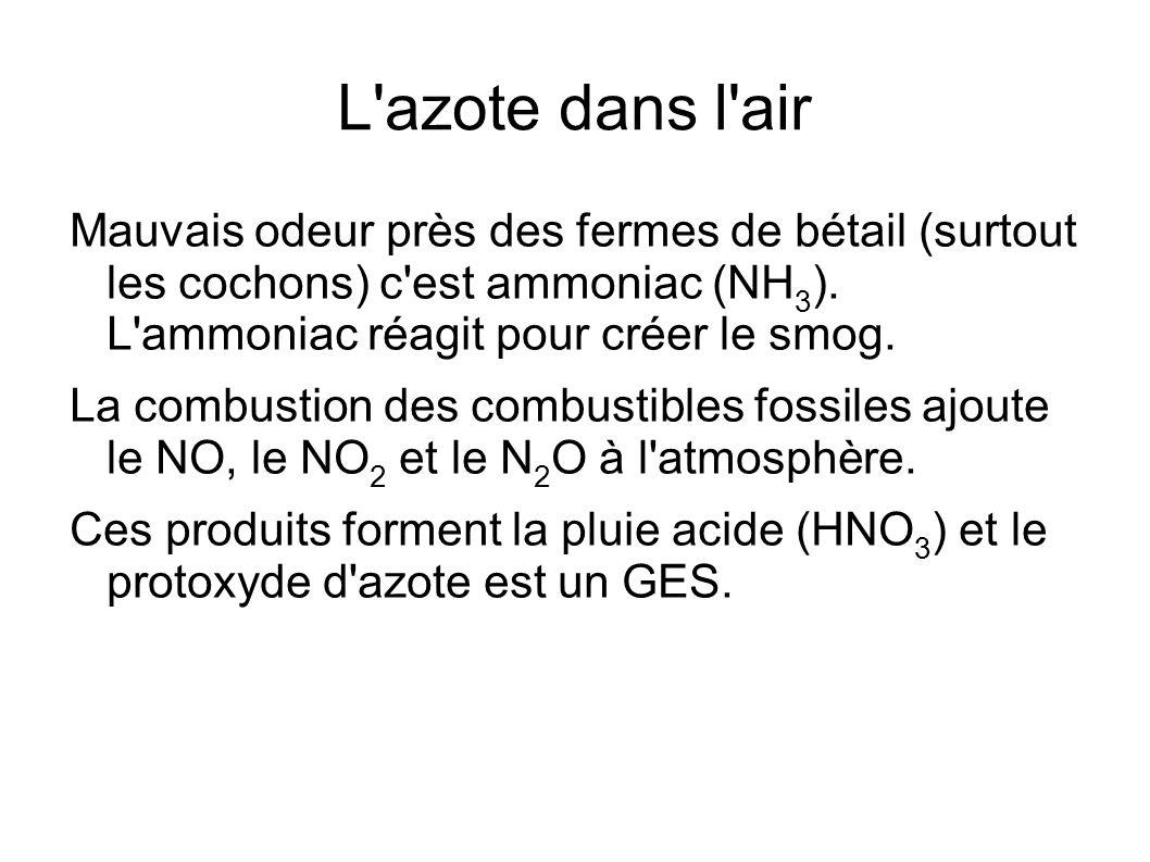 L azote dans l airMauvais odeur près des fermes de bétail (surtout les cochons) c est ammoniac (NH3). L ammoniac réagit pour créer le smog.