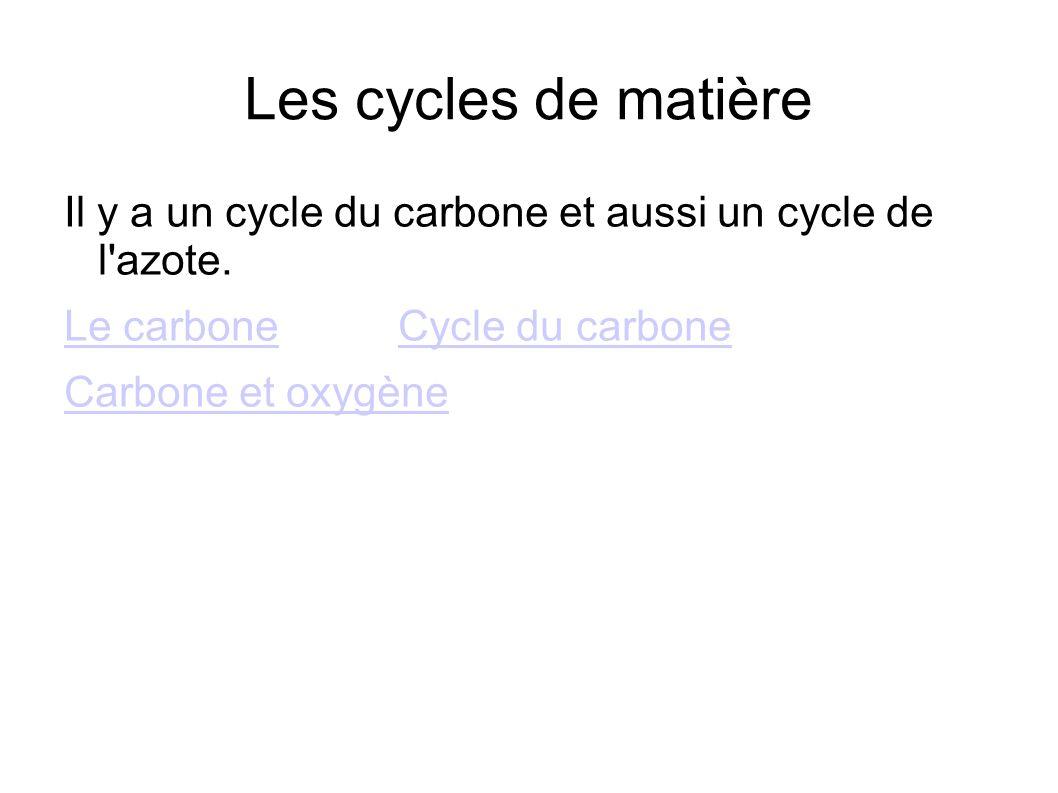 Les cycles de matière Il y a un cycle du carbone et aussi un cycle de l azote. Le carbone Cycle du carbone.