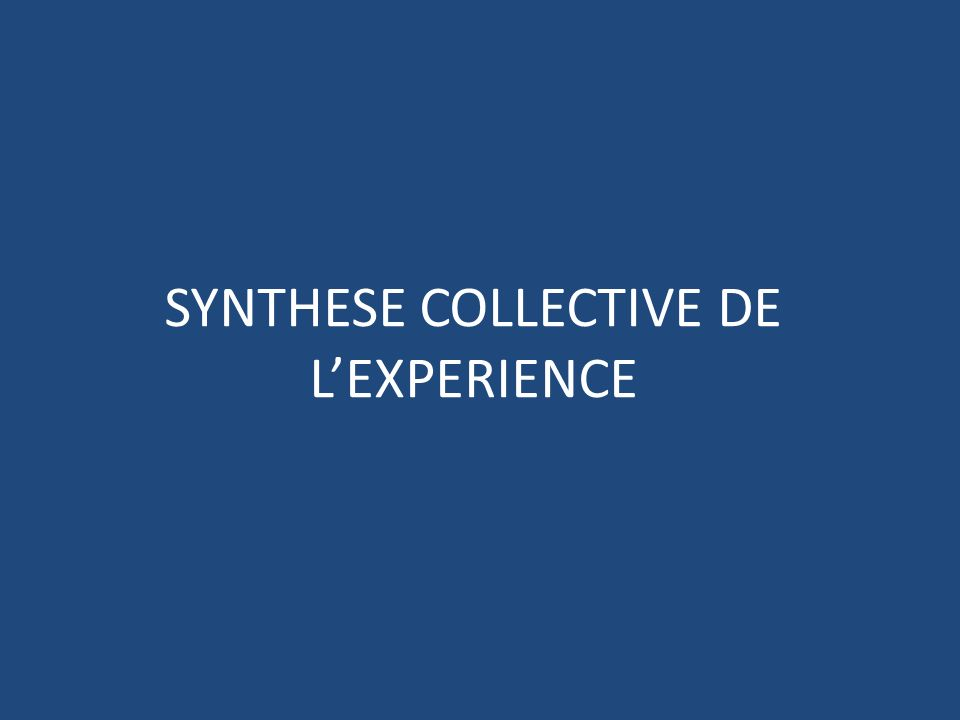 SYNTHESE COLLECTIVE DE L'EXPERIENCE