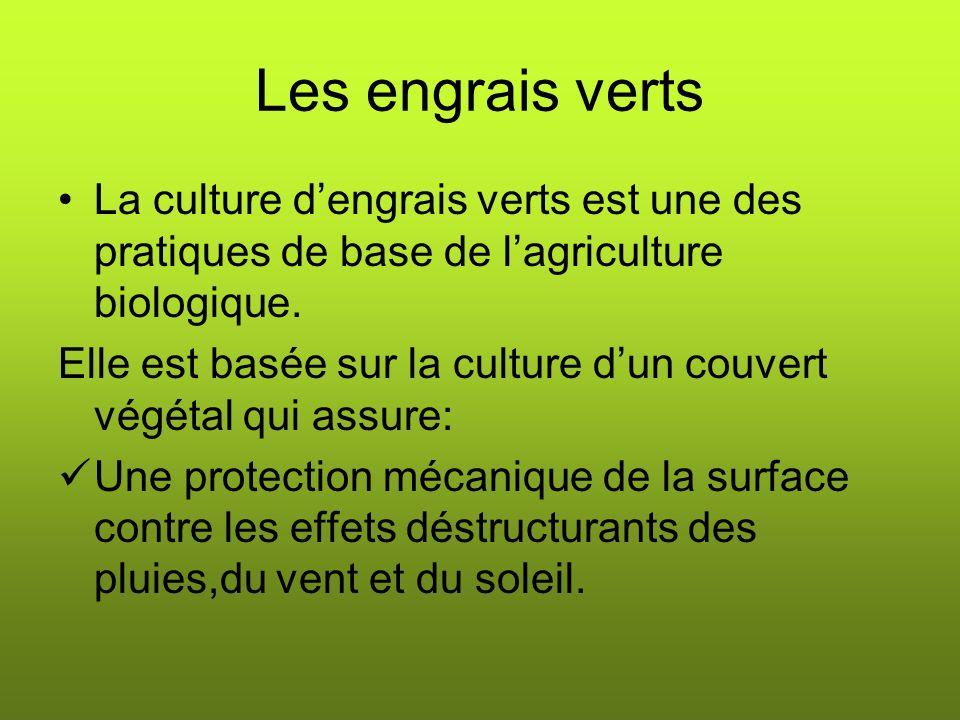 Les engrais verts La culture d'engrais verts est une des pratiques de base de l'agriculture biologique.