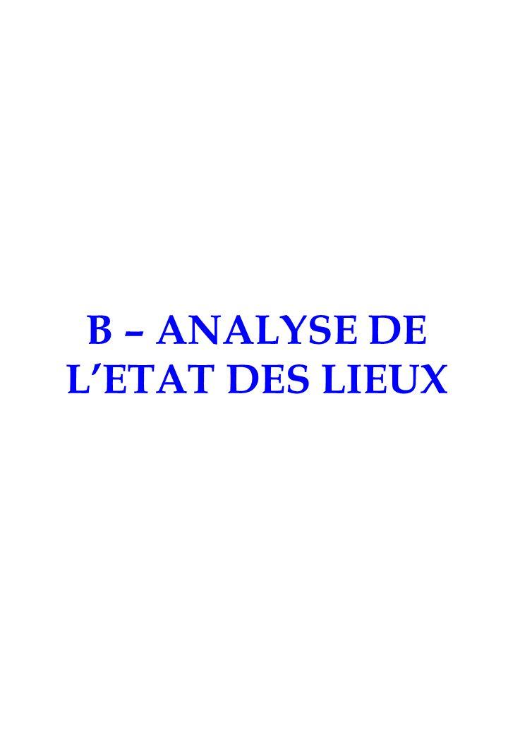 B – ANALYSE DE L'ETAT DES LIEUX
