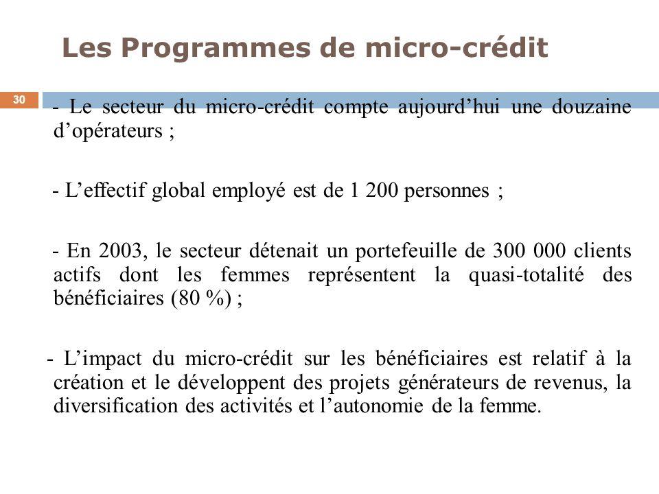 Les Programmes de micro-crédit