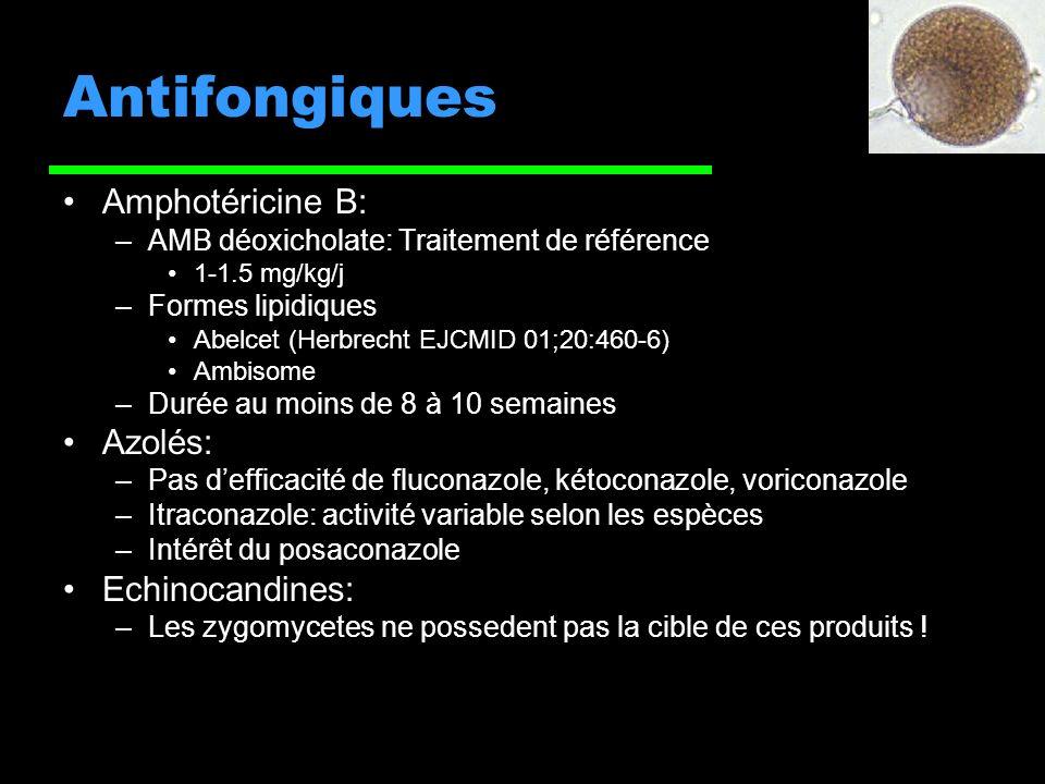 Antifongiques Amphotéricine B: Azolés: Echinocandines: