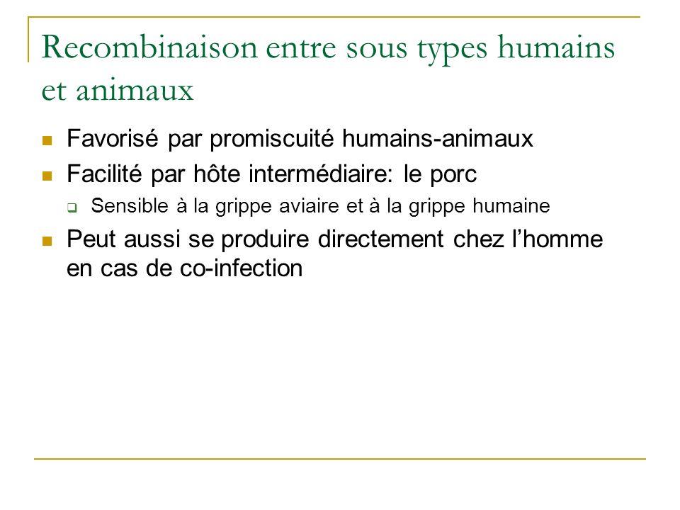 Recombinaison entre sous types humains et animaux