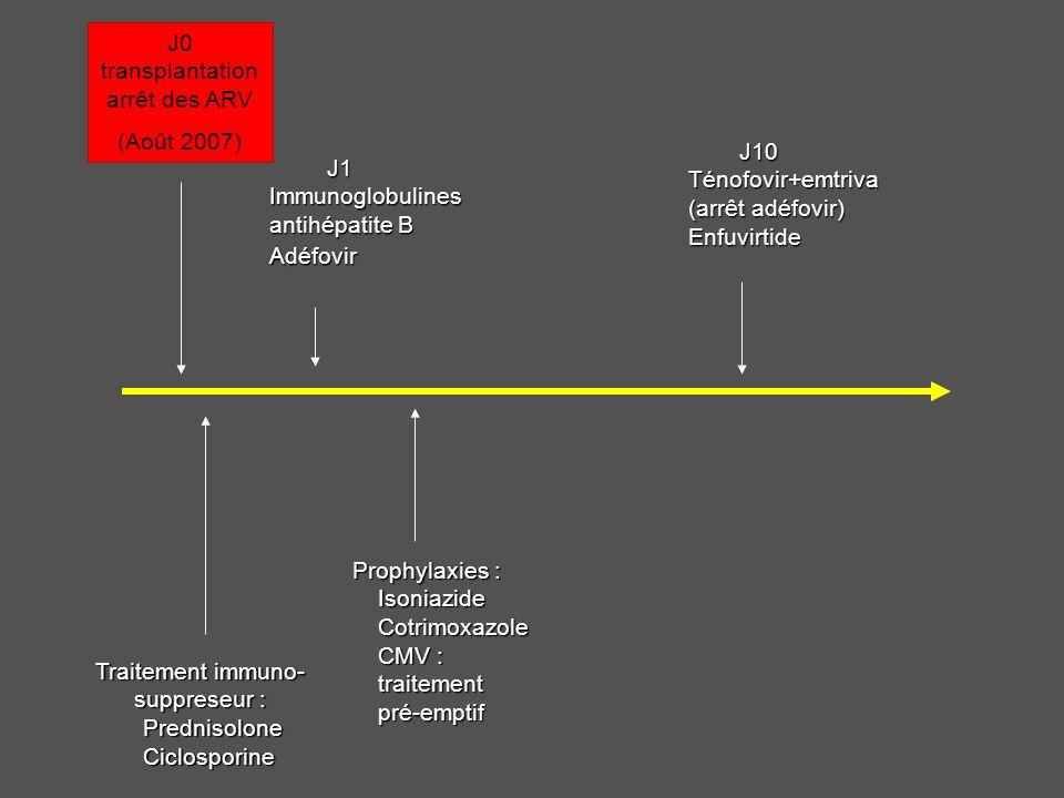J0 transplantation arrêt des ARV