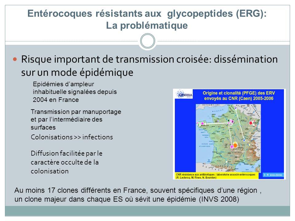 Entérocoques résistants aux glycopeptides (ERG): La problématique