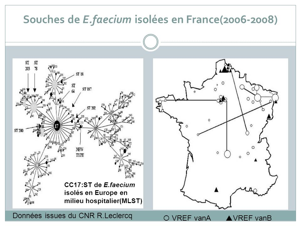 Souches de E.faecium isolées en France(2006-2008)
