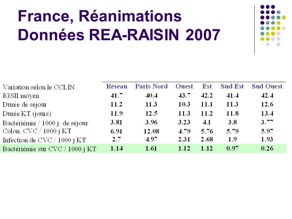 France, Réanimations Données REA-RAISIN 2007