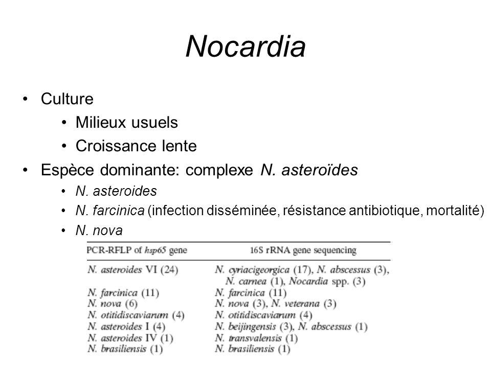 Nocardia Culture Milieux usuels Croissance lente